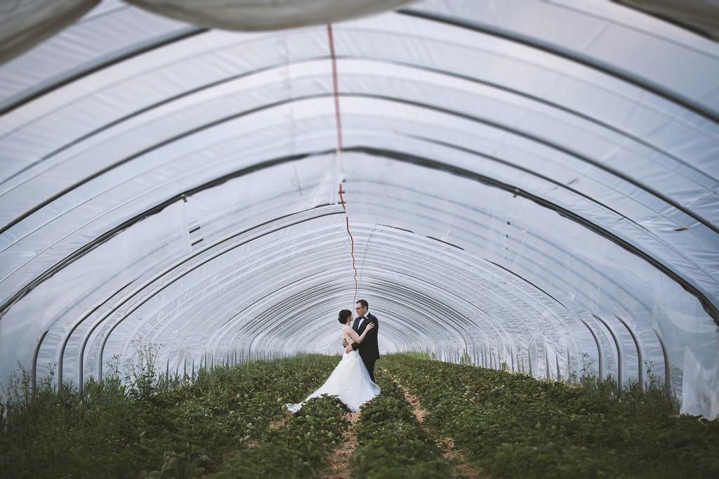 Hochzeit auf Rittergut Meinbrexen Brautpaar Erdbeeren