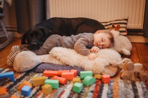 Babyshooting mit Hund